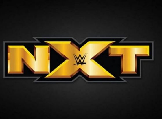 Report: Former ROH Writer Joins WWE NXT
