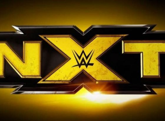 Report: NXT Getting Their Own Women's Tag Team Titles